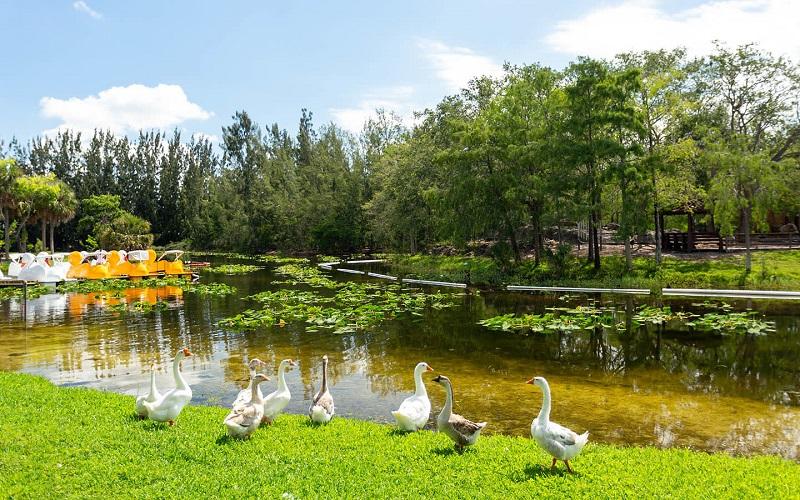 Amelia Eahart Park em Miami